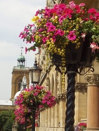 Britain in Bloom, Guildhall